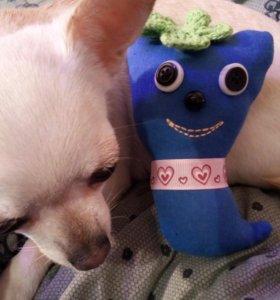 Куколка игрушка чихуахуа