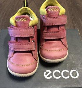 Ботинки Ecco biom (весна-осень)