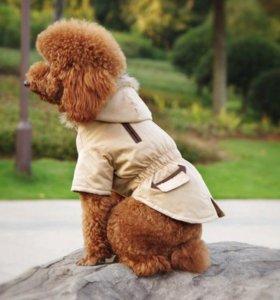 Новая парка-молодежная куртка для питомца размерS