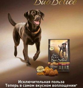 "PRO PLAN ""DUO DELICE Adult"" сухой 10 кг для собак"