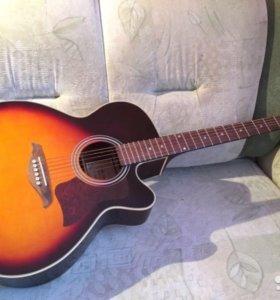 Гитара AMATI