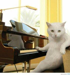 Уроки музыки и английского( фортепиано и вокал)