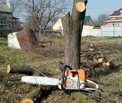 Спил деревьев выкорчевка