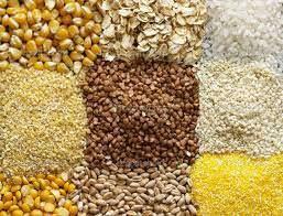Отруби(пшеница озимая)