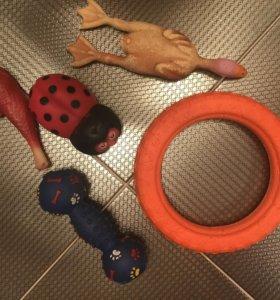 Игрушки для собаки.