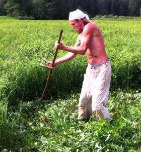Покос любой травы