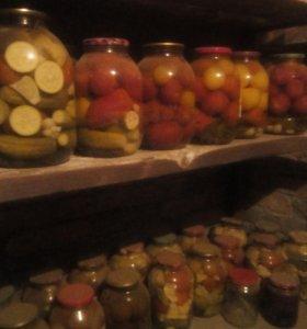 Солонина.огурцы.помидоры.ассорти.