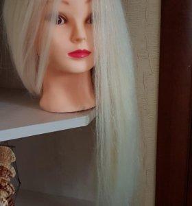 Голова учебная натуральная 90%, блонд Fantom 50 см
