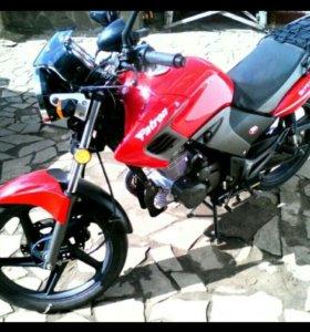 Patron Gipsy200