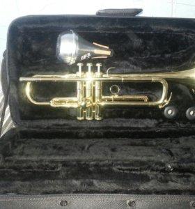 Труба амати