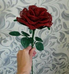 Роза. Цветы. Подарок.