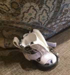 Продам ботинки для собаки мелкой породы.