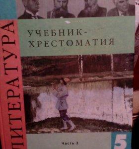 Школьный учебник по литературе