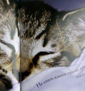 Добрая книга о котиках и кисках в афоризмах велики