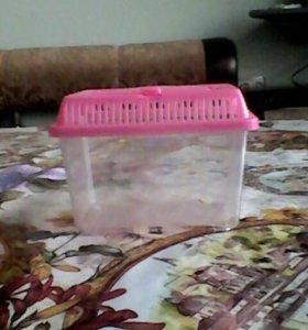 Аквариум для черипах