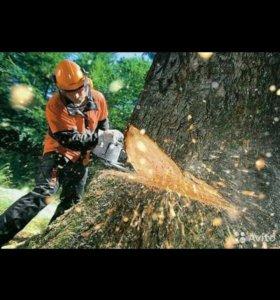 Каранирование деревьев , покос травы