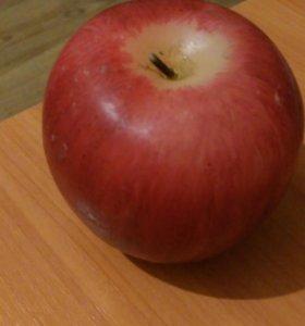 Яблочки из Икеи
