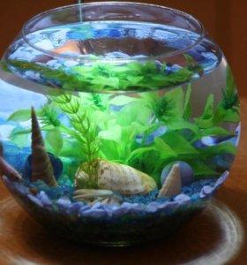 Круглый аквариум 4 литра