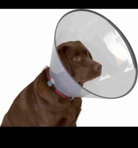 Воротник для собак продам или обменяю