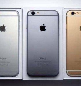 Apples6.16