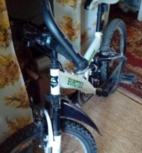 Велосипед Eurutex