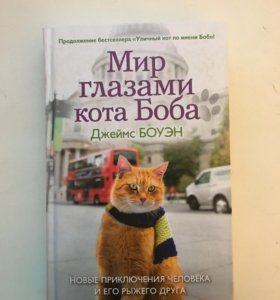 Мир глазами кота Боба. Джеймс Боуэн