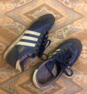 Adidas gragon