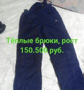 Теплые брюки