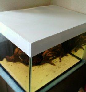 Продам аквариум на 106 литров без крышки