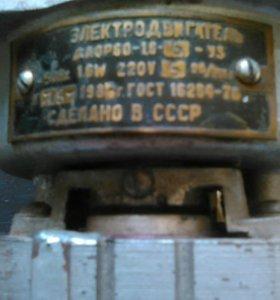 Электродвигатель с редуктором 220 вольт 5 об/мин 1