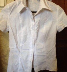 Белая блузка, 42-44