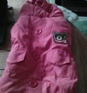 Зимняя курточка для собачки