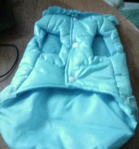 Курточка для маленькой собачки