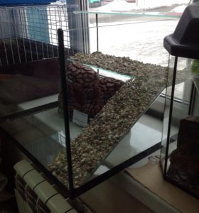 Ремонт аквариума, террариум , черепашник
