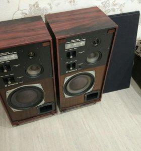 Колонки Радиотехника 35ас-201