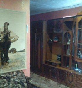 Мебельная стенка(длинна 4.2)