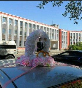 жених и невеста на свадебную машину