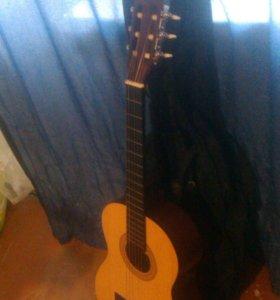Гитара подрасковая