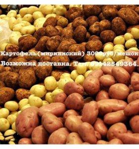 Картофель Мирнинский