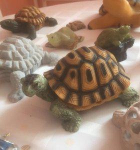 Коллекция черепашек