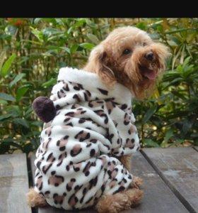 Комбез для маленькой собачки
