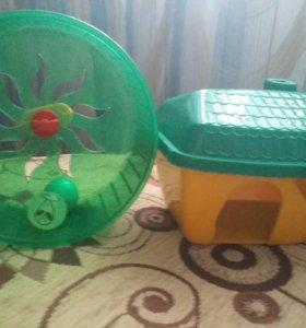 Дом и колесо для грызунов