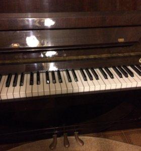 Пианино: Сура -2