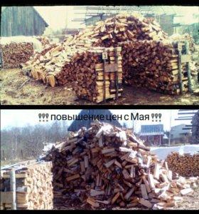 Колотые дрова (береза)