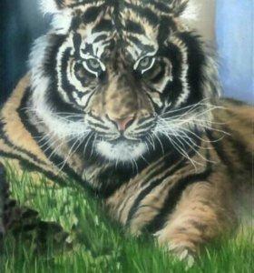 """Картина """"Тигр"""""""