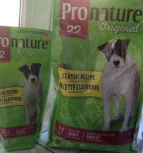 Корм для взрослых собак Pronature + подарок