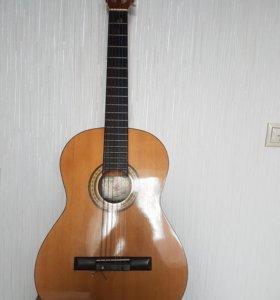 Гитара +  в подарок чехол