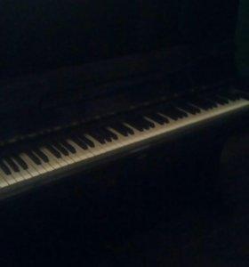 Пианино десна