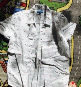 Три Рубашки/мальчик