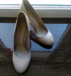 Туфли Calipco